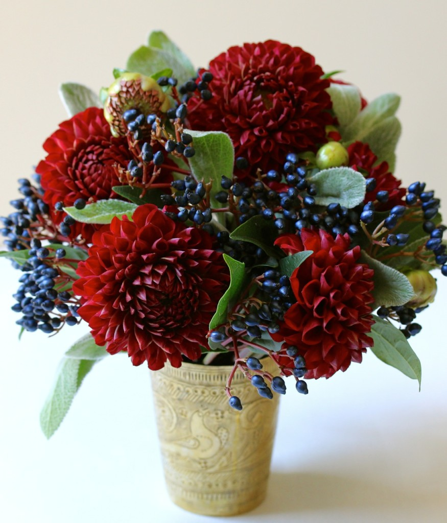 Red white and blue flowers mightylinksfo