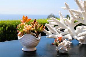 Beach House Flowers