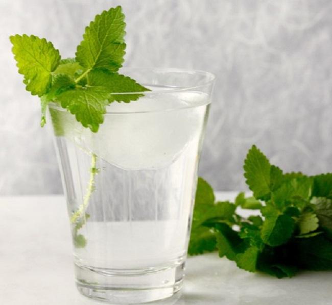 Lemon Balm Gin and Tonic