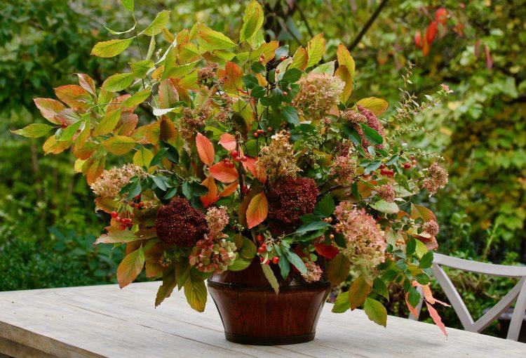 Flowers of Autumn